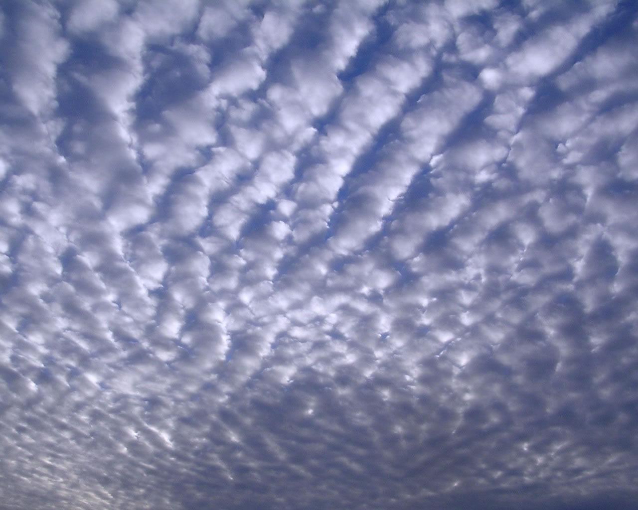 548-nuage-viaa